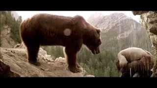 Потрясающие съёмки дикой природы!!! Кадры из х\фильма МЕДВЕДЬ.
