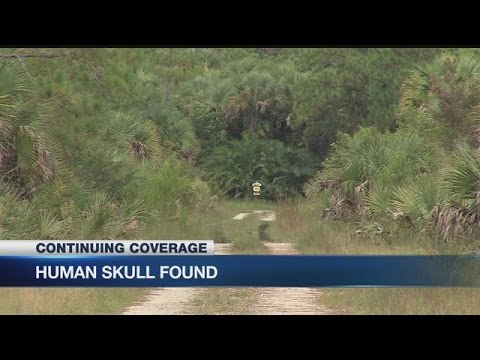 Campers stumble across human skull in Collier
