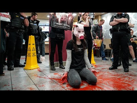 Animal Rights Activists Cover McDonalds In Blood