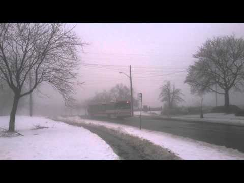 TTC 100 Bus vanishes in the fog at Flemingdon Park North York Toronto