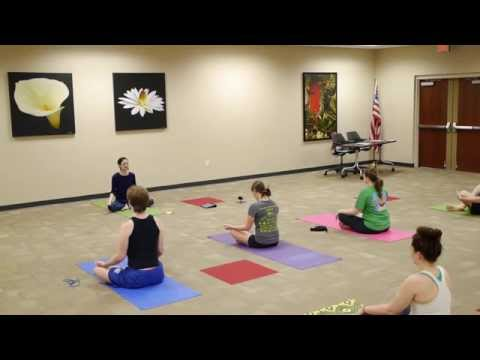 Guided Entry-Level Yoga and Meditation