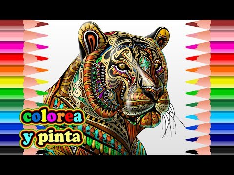 Mandala Tiger Coloring Page Tigre Mandala Para Colorear Youtube