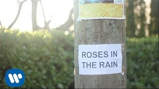Buck 65 - Roses In The Rain (Feat. Adaline) - Official Lyric Video