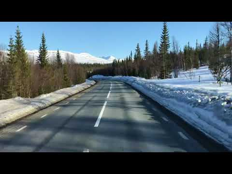 Von der Schwedischen Grenze Richtung Östersund   E14   Schweden #1