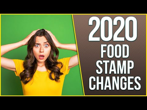 Food Stamp Changes 2020: What You Need To Know