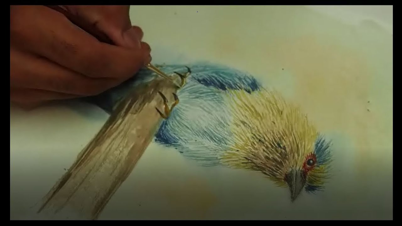 Watercolor Painting of Indian Roller bird