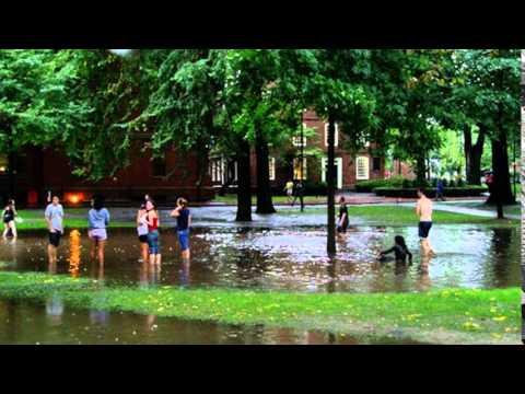 Catalog of Online Courses | Harvard University