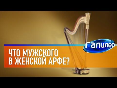 Галилео | Арфа 🎶 [Harp]