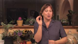 Gardening: Edible Plants : How to Grow Tomatillos