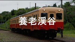 初音ミクが「ロカラバ0436~きっと晴れ渡る~」のサビの部分で小湊鐵道の駅名を歌います。