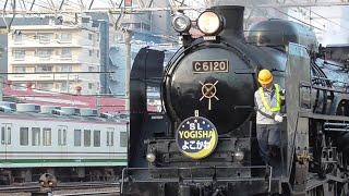 2019年12月21日 快速「EL・SL YOGISHA よこかわ」 蒸気機関車 C61 20+12系客車 5両+電気機関車 EF64 1001