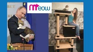 Комплекс для кошки с когтеточкой Meow