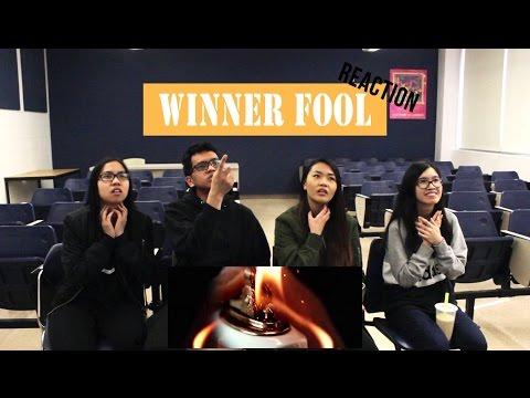 [APRICITY] WINNER - FOOL MV Reaction Video