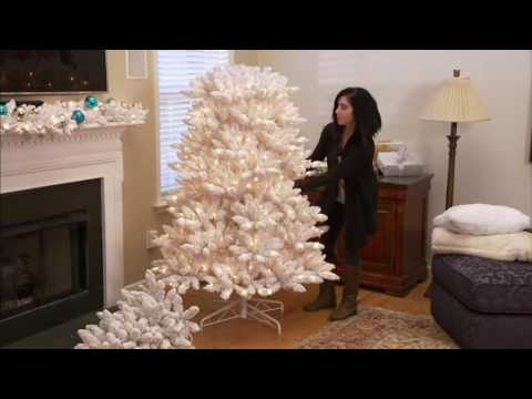 Bethlehem Lights Flocked Christmas Tree with Instant Power on QVC