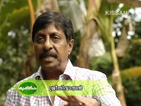 Organic Vegetable cultivation coordinated by Sri. Srinivasan Film star-615