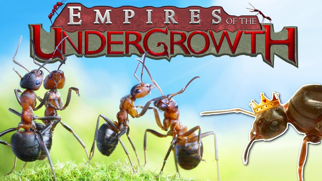 BUILDING AN ANT COLONY! - Empires of the Undergrowth Gameplay - Ant Colony  Simulator!