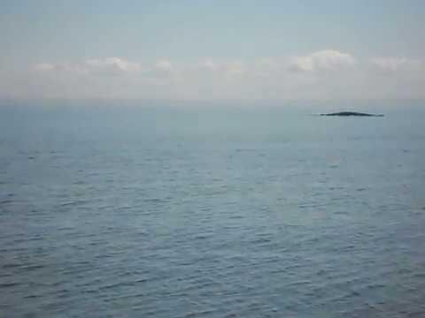 Tadoussac - Le Balene. Whale Watching Sullo Zodiac.