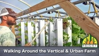 Opening the Vertical Aquaponic and Urban Farm in the Morning