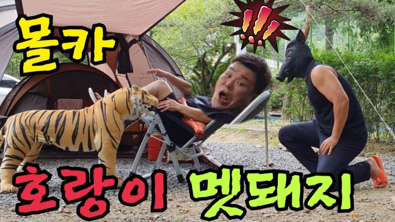 (몰카)캠핑장에서 자고있는데 호랑이,멧돼지가 나타난다면?? feat.라면먹방