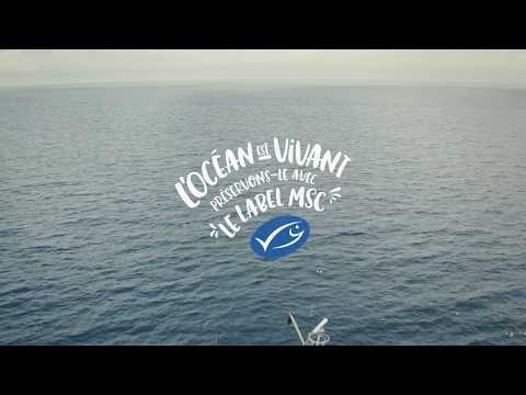 Vidéo L'Océan est vivant - Label MSC
