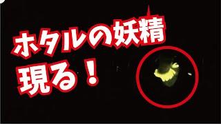 「妄想変態トシレンジャー」 2013年 池袋手刀 東京みるくベイビーズ 200...