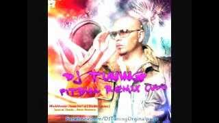 Pitbull - Culo ( Dj Tuning Remix )