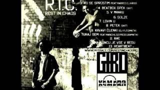 R.I.C. - V Mraku