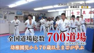 The official Video of SHINKYOKUSHINKAI. 全世界空手道連盟新極真会の...