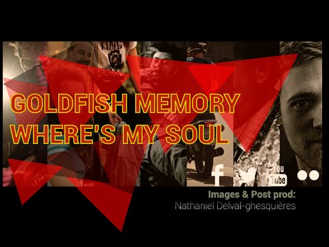 Goldfish Memory - Where's My Soul