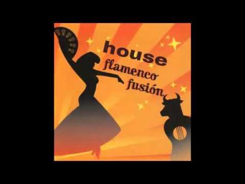 house - flamenco 2016