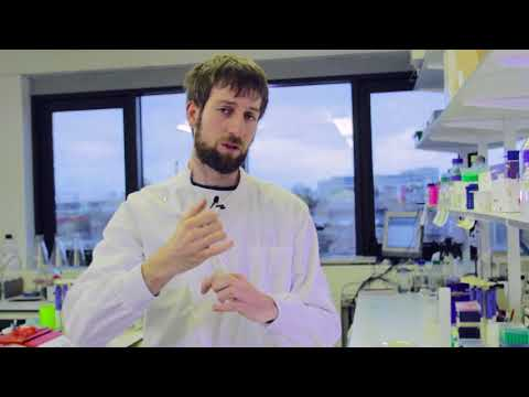 QMUL Science Alive: Protein expression and purification