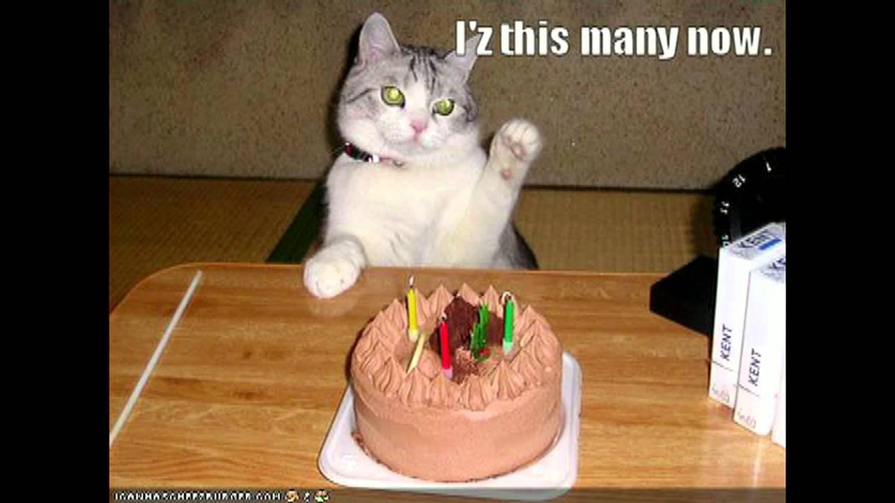 Happy Birthday Susie Youtube