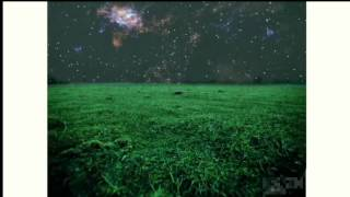 ГРИБЫ - ТАЕТ ЛЕД (SHOOTING STARS MEMES)