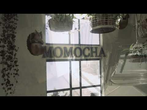 wonder forest cafe & zakka momocha「ワンダーフォレストカフェ&雑貨 モモチャ」