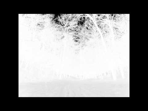 Daniel Bachman - Grey (Take Three)