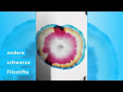 Chromatografie (Schwarze Filzstifte)