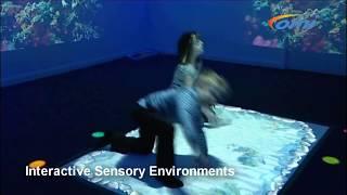 Interactive Sensory Environments