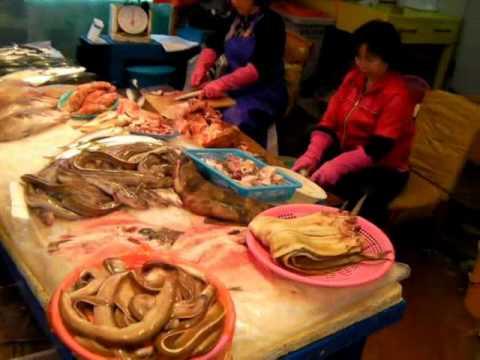 South Korea: Jeju Dongmun Market  제주시 동문시장  済州市東門市場