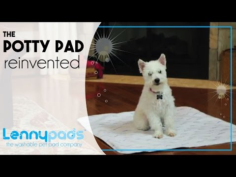 The Potty Pad Reinvented - Introducing Washable Lennypads