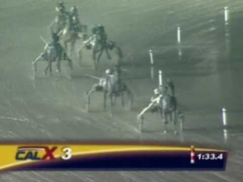 Harness Racing, Impossible Comeback! - Hitchhiker