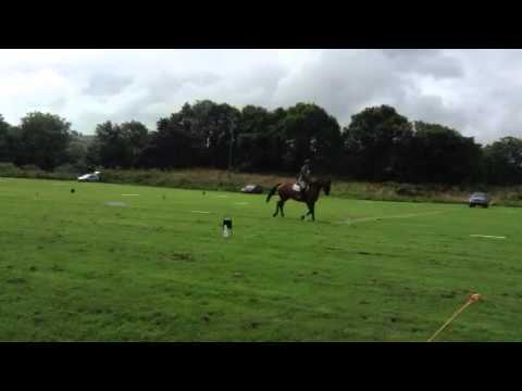 Alomar DS @ launceston horse trials