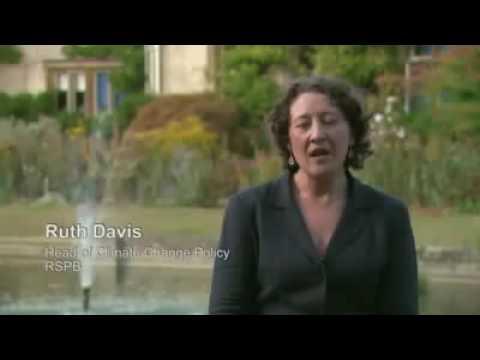 Wind Power - Ruth Davies