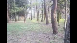 Коп в парке с АКА ВЕКТОР 7260
