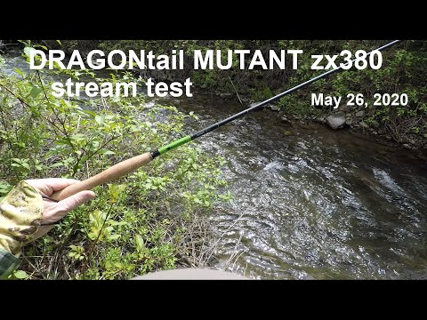181. DRAGONtail MUTANT Zx380 Test - May 26, 2020