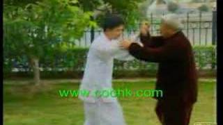 Wu Style Tai Chi Taiji : Push hands & Force Skill KF694-3coo