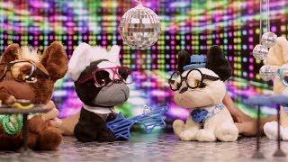 ¡Las mejores historias de juguetes, los Trendy Dogs por el mundo! Episodio 3