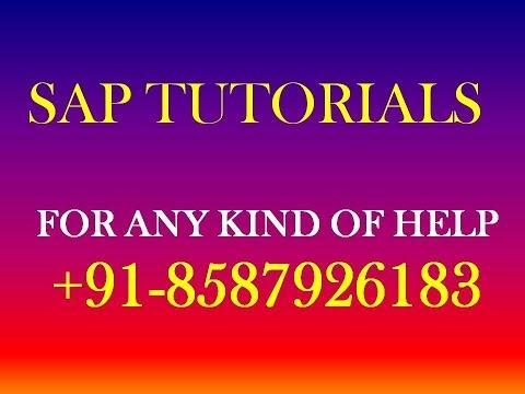 SAP TUTORIAL - SAP BASIC KNOWLEDGE - SAP ONLINE TUTORIALS