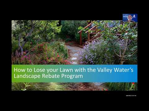How to Lose your Lawn with the Valley Water Landscape Rebate Program