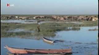Verbrechen im Namen des Klimas - Climate Crimes - Doku deutsch Dokumentation