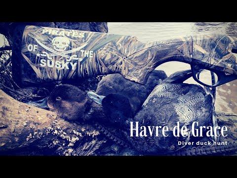 Sand Island Duck Hunting Havre De Grace MD